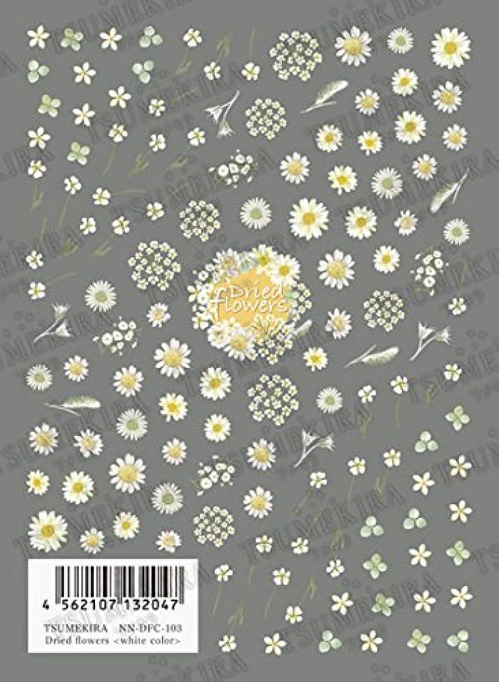 転倒知っているに立ち寄る式TSUMEKIRA Dried flowers white color NN-DFC-103