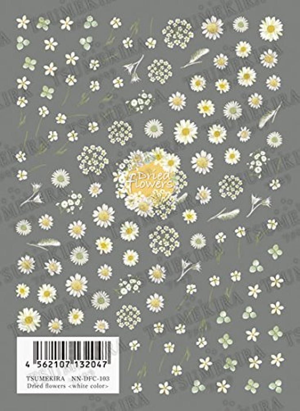 人里離れたスリル準備ができてTSUMEKIRA(ツメキラ) ネイルシール Dried flowers (white color) NN-DFC-103