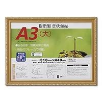 大仙 額縁 賞状額 金消 R A3大 樹脂製 シュリンクパック J045B3400