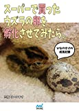 スーパーで買ったウズラの卵を孵化させてみたら。?ひなのすけの成長記録?