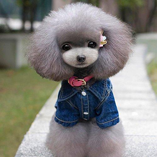 Karchi 犬用 パーカー  カウボーイ服 ファション  ベットフード  犬服 ペットジャケット エルク ブラウン  ワンちゃん お出かけ お散歩 S、M、L、XL、2XL  保温 防寒   (XL, 青)