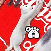 猫キャッチ! 【4.白】(単品)