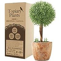 光触媒植物 人工観葉植物 フェイクグリーン トピアリー ボール 光触媒 高さ23cm