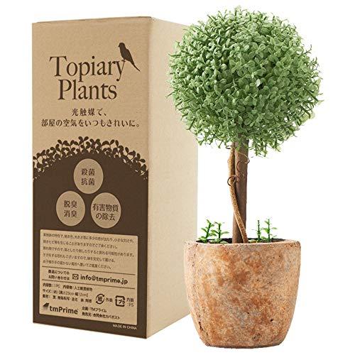 【Amazon.co.jp限定】観葉植物 フェイク 光触媒 消臭 トピアリー...