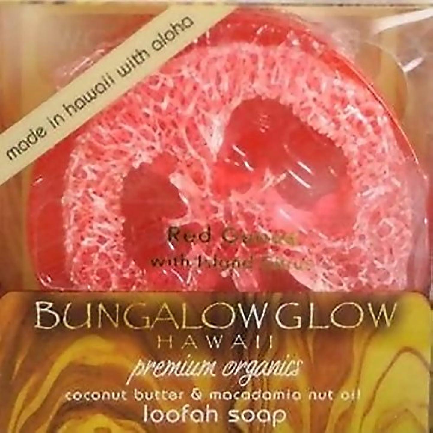 反抗印象的悲しいことにハワイアン雑貨 ハワイ雑貨【バンガローグロー】ハワイからのオーガニックソープ(レッドグアバ) 【お土産】