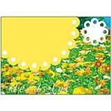 DEEDS ポストカード DM-K104 100枚 / ダイレクトメール DM はがき 美容室 サロン ネイル エステ