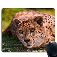 ヒョウの休息、見る、野生動物 ゲームマウスパッド カスタム パーソナライズデザイン ノンスリップ ゴムマウスパッド 光学式マウス対応マウスパットーゲーミング対応 マウスパット