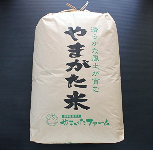 新米【玄米】 2019年山形県産 はえぬき 30kg [石抜き済]