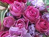 『Amazonセール!1月18日0時〜1月23日24時まで!!』『誕生日・バレンタイン・卒入学祝い・ギフト』『s-series:ピンクグラデーション花束(ブーケタイプ)』高さ約30㎝、幅約25㎝ フレーバーハウス