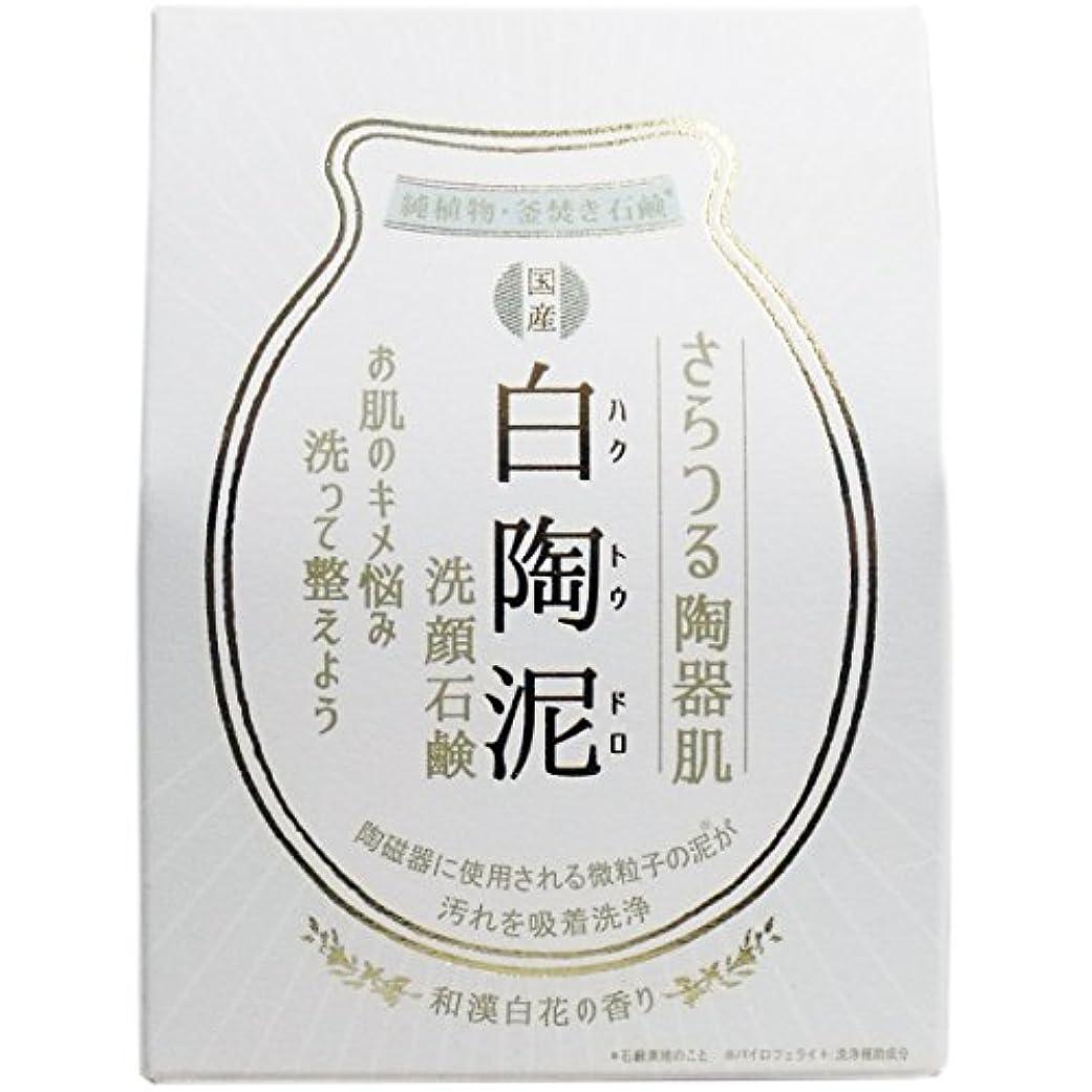 延ばす可塑性重荷白陶泥洗顔石鹸 100g×5個セット