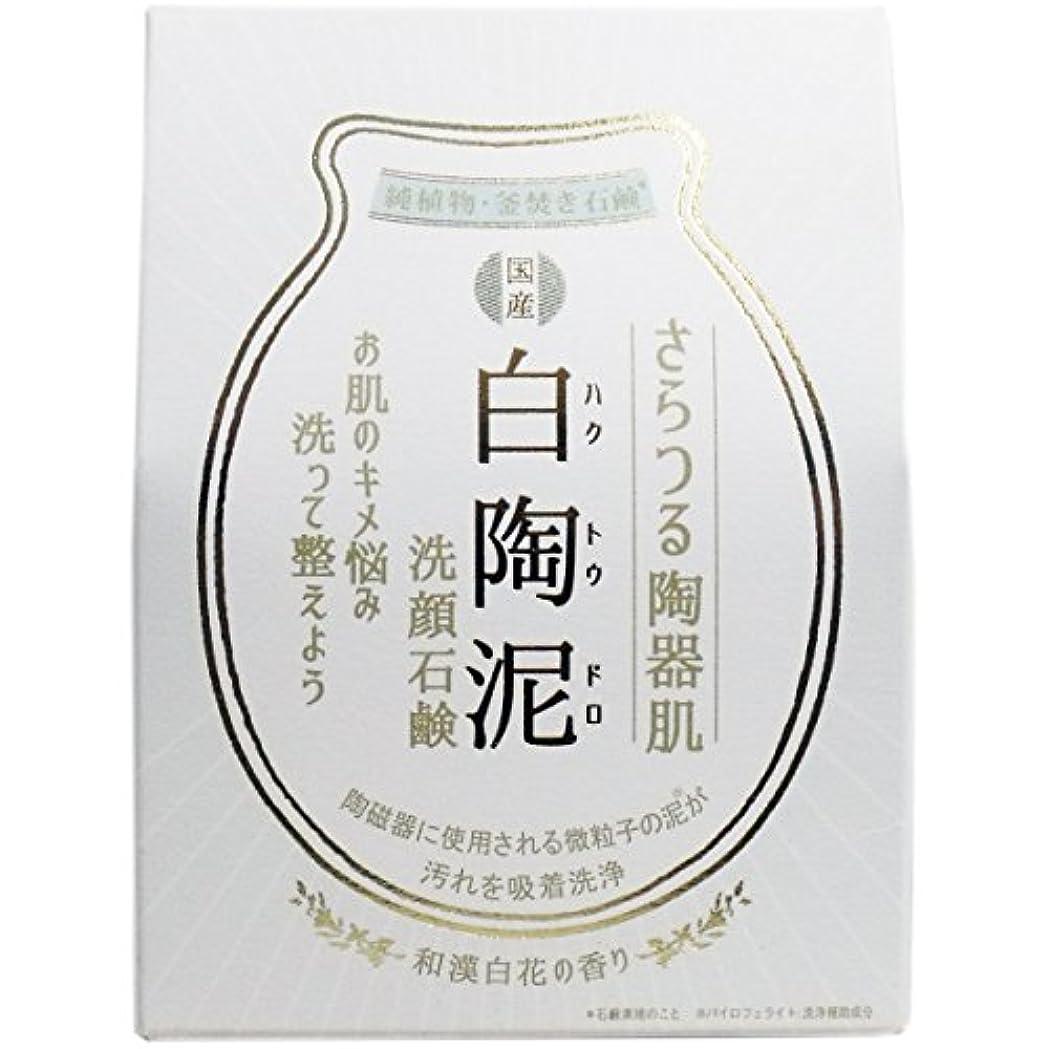 実験室歩行者情緒的白陶泥洗顔石鹸 100g×5個セット