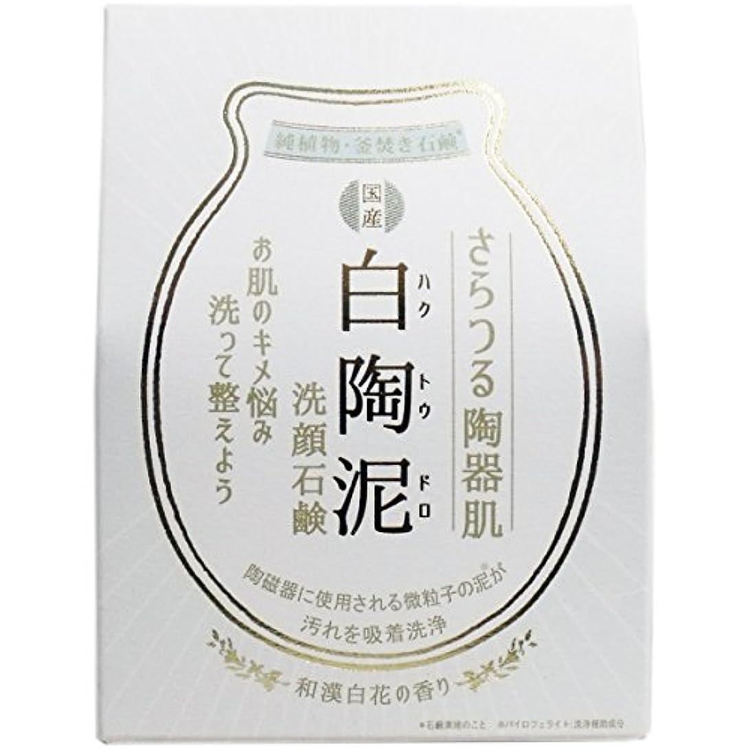 コンプライアンスなめらかなかわす白陶泥洗顔石鹸 100g×5個セット