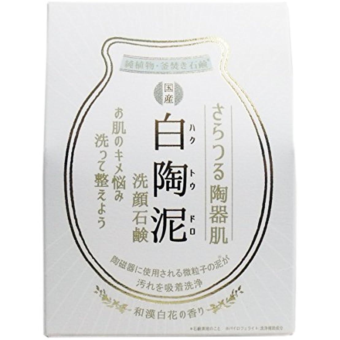 白陶泥洗顔石鹸 100g×5個セット