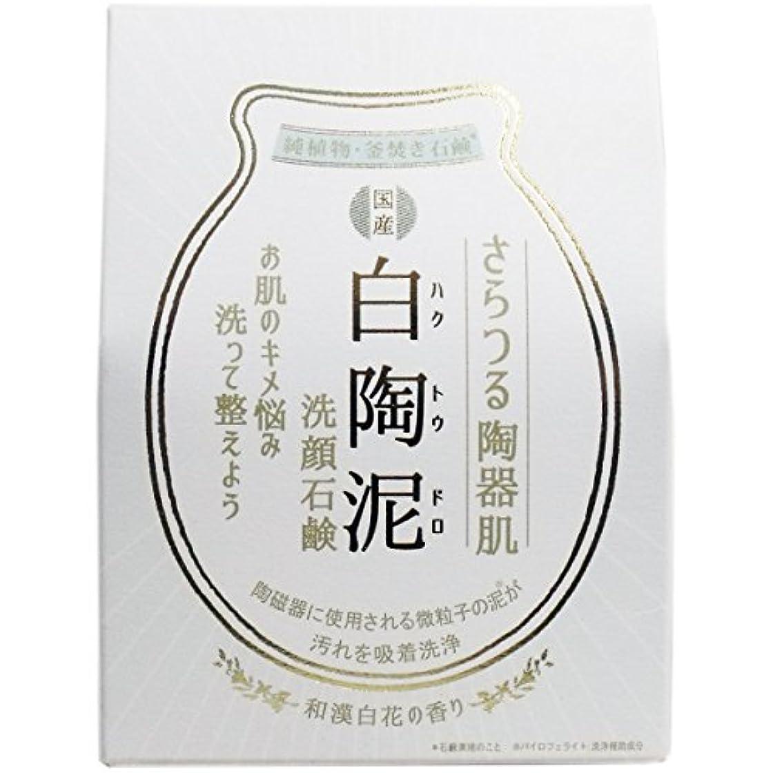 試験オーガニック隙間白陶泥洗顔石鹸 100g×5個セット