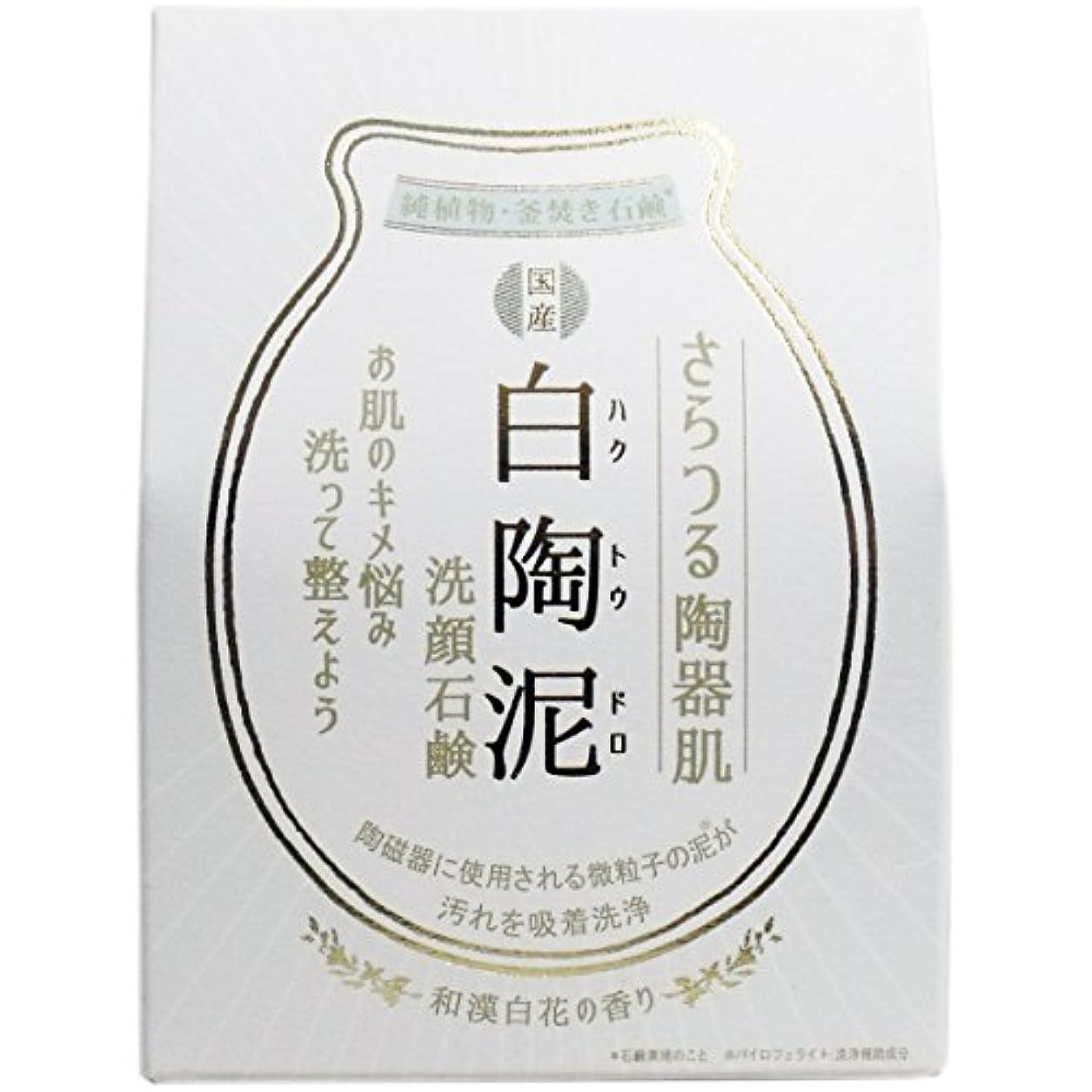 乳剤トークントラクター【まとめ買い】白陶泥洗顔石鹸 100g【×6個】