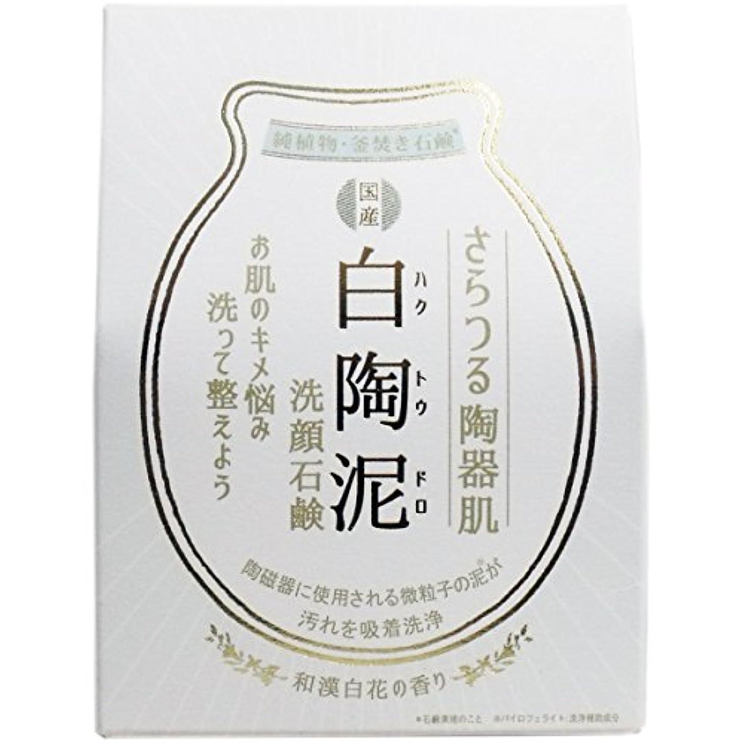 うれしい観光冬白陶泥洗顔石鹸 100g×5個セット