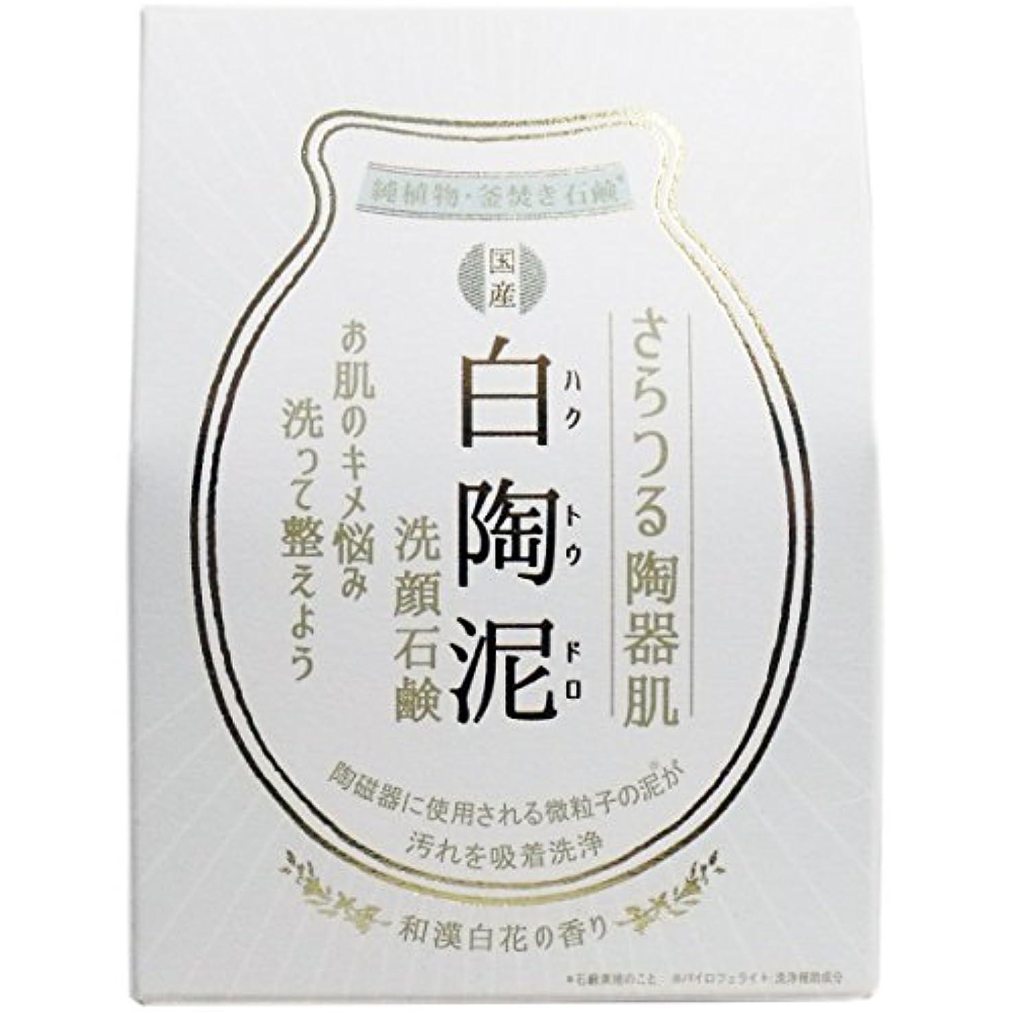 ジョットディボンドンプレビスサイト暗くする白陶泥洗顔石鹸 100g×5個セット
