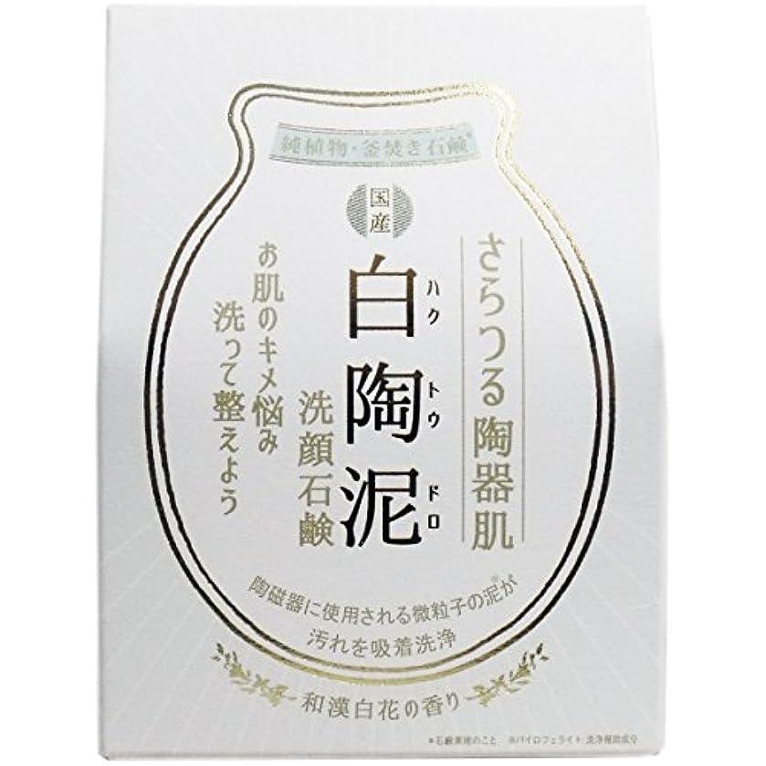 カメ順番レース白陶泥洗顔石鹸 100g×5個セット
