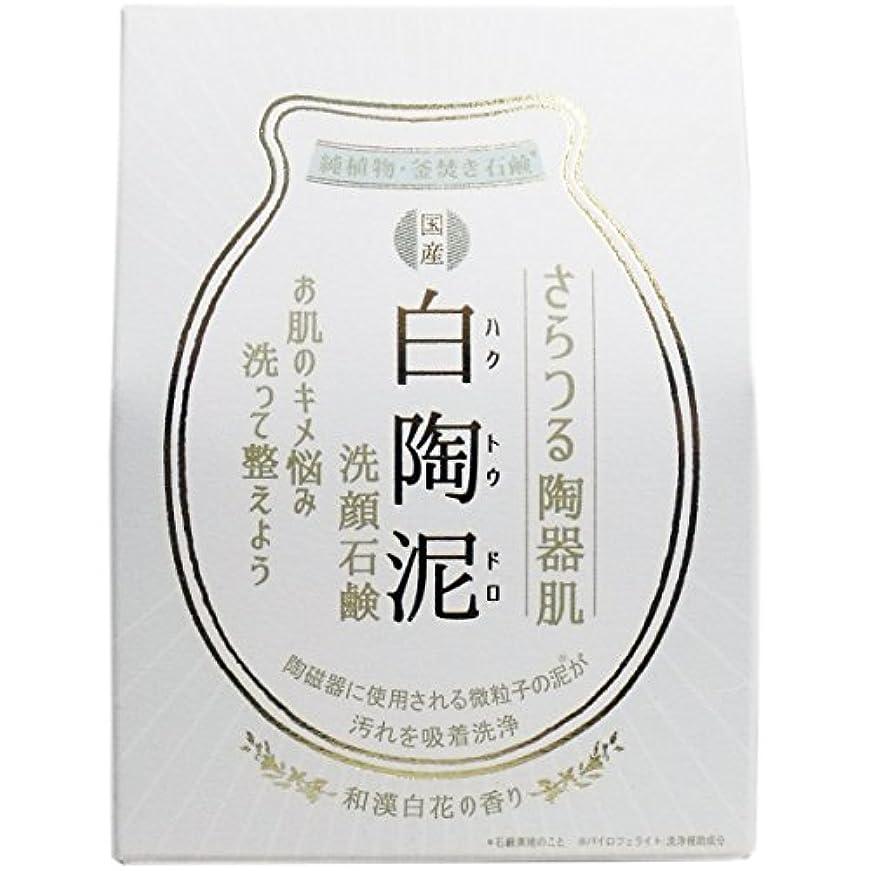 一貫性のない簿記係豚肉白陶泥洗顔石鹸 100g×5個セット