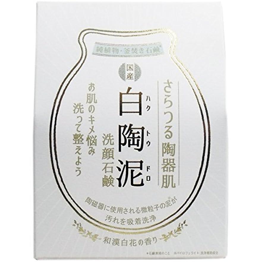 ひどくチキン簡潔な白陶泥洗顔石鹸 100g×5個セット