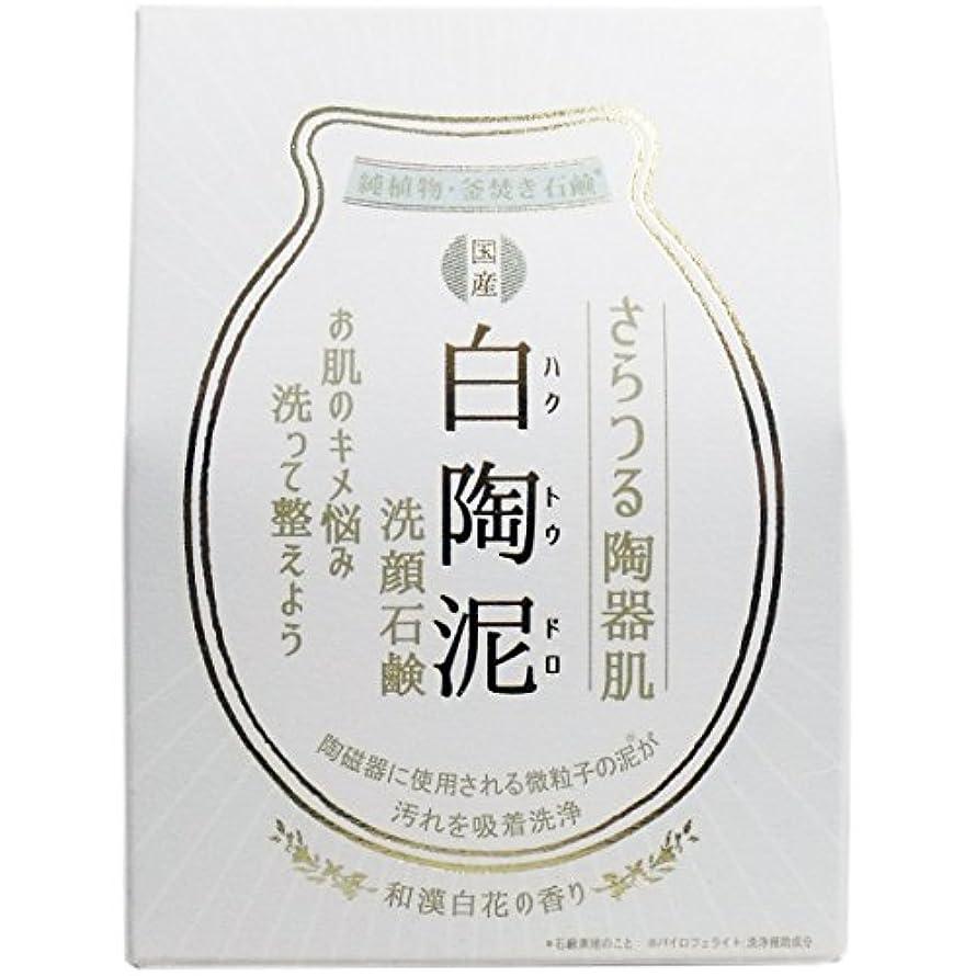 持っている半島出来事【まとめ買い】白陶泥洗顔石鹸 100g【×6個】