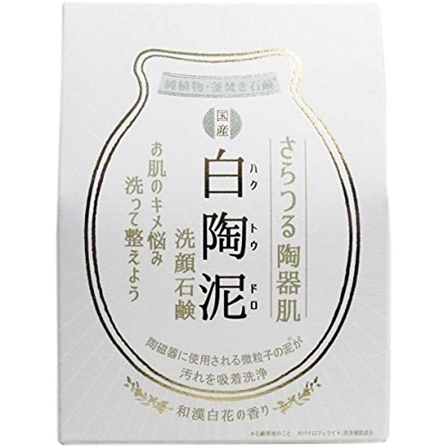 操作可能ベスビオ山ノイズ【まとめ買い】白陶泥洗顔石鹸 100g【×6個】
