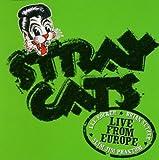 Live in Hamburg 13/07/04