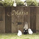 さよなら 大好きな人 / MARIA