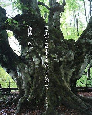 巨樹・巨木をたずねて