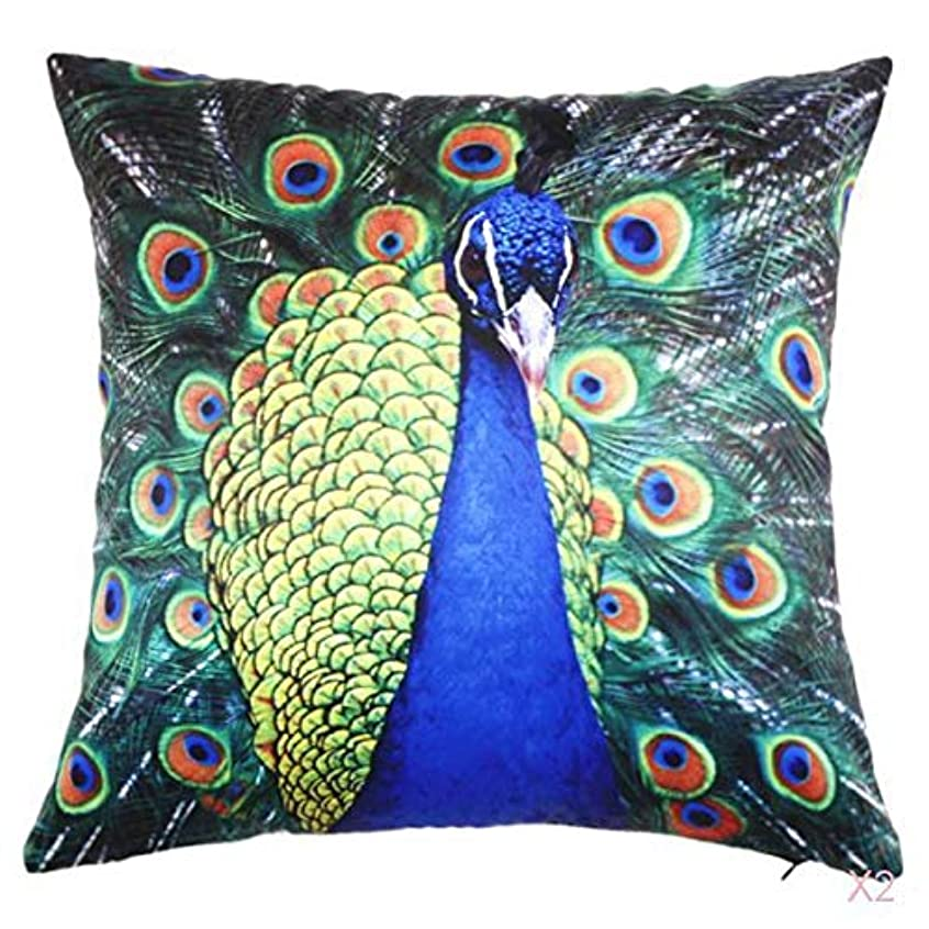 お風呂を持っている権利を与える乱気流45センチメートル家の装飾スロー枕カバークッションカバーヴィンテージ孔雀のパターン03