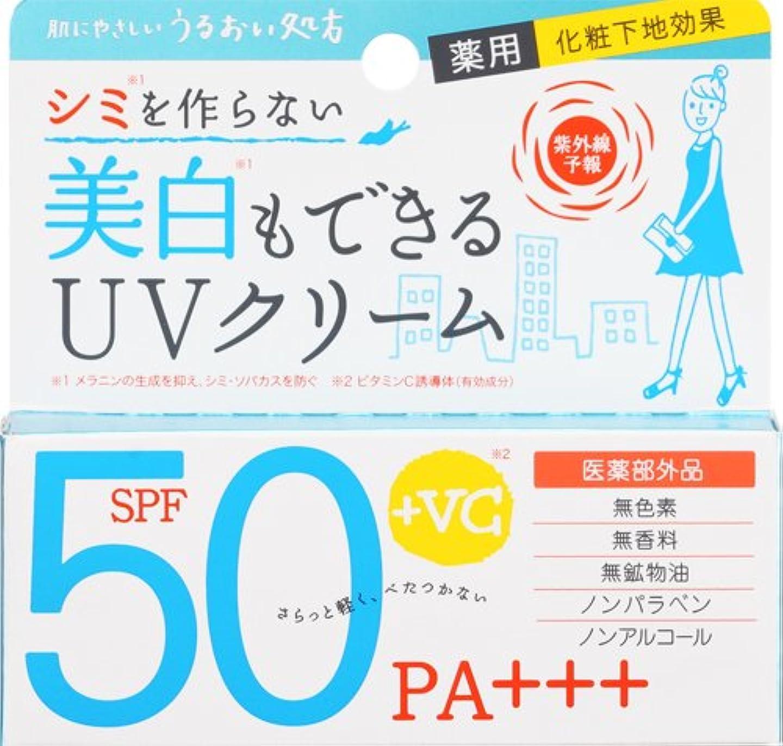 パントリー可塑性規範紫外線予報 薬用美白UVクリーム 40g