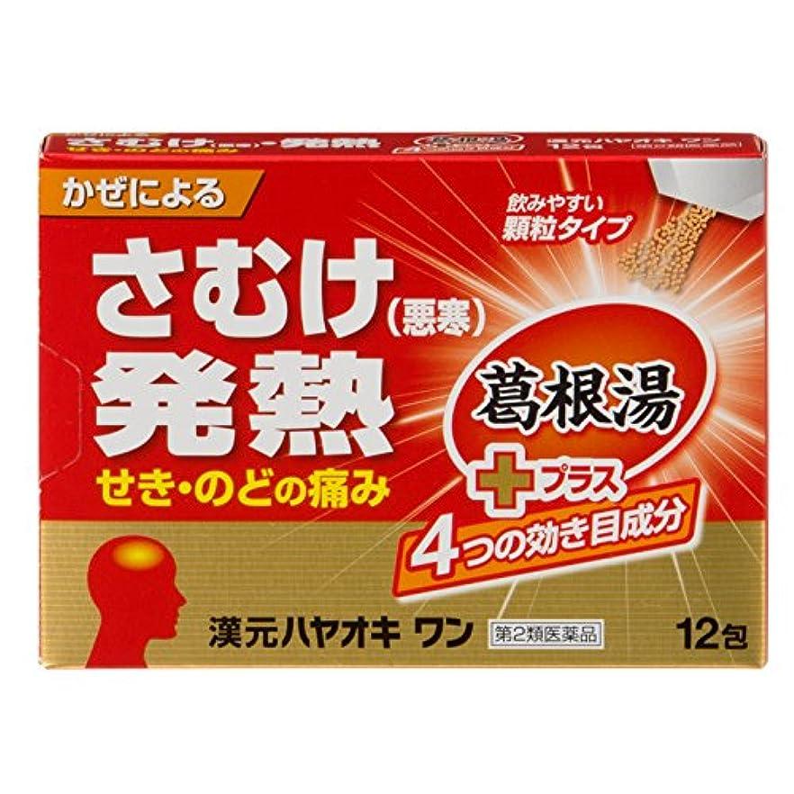 ステレオタイプ消毒剤ポルトガル語【第2類医薬品】漢元ハヤオキワン 12包