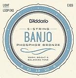 D'Addario ダダリオ バンジョー弦 フォスファー Light 5弦 .009-.020 EJ69 【国内正規品】
