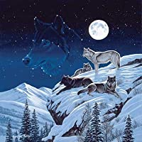 Moonlight Sentinel 500pc Jigsaw Puzzle by Cynthie Fisher