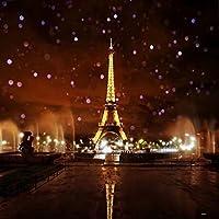 パリの撮影は背景の布を使います 夜にエッフェル塔の写真は背景の布を使います (3x3m(10x10ft))