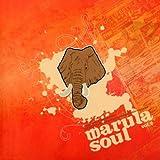 Marula Soul Vol. 2