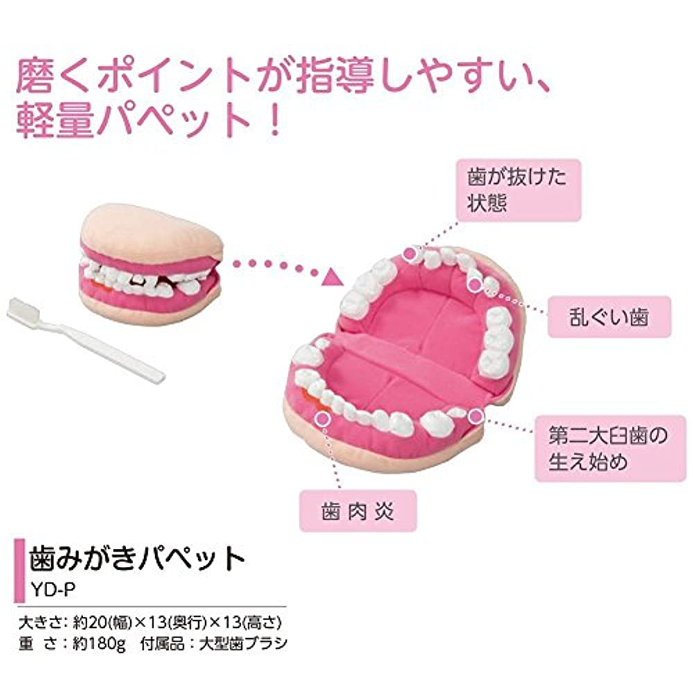 令状気分が悪い口径歯磨き指導用パペット YD-P 人形 ぬいぐるみ 歯みがきパペット