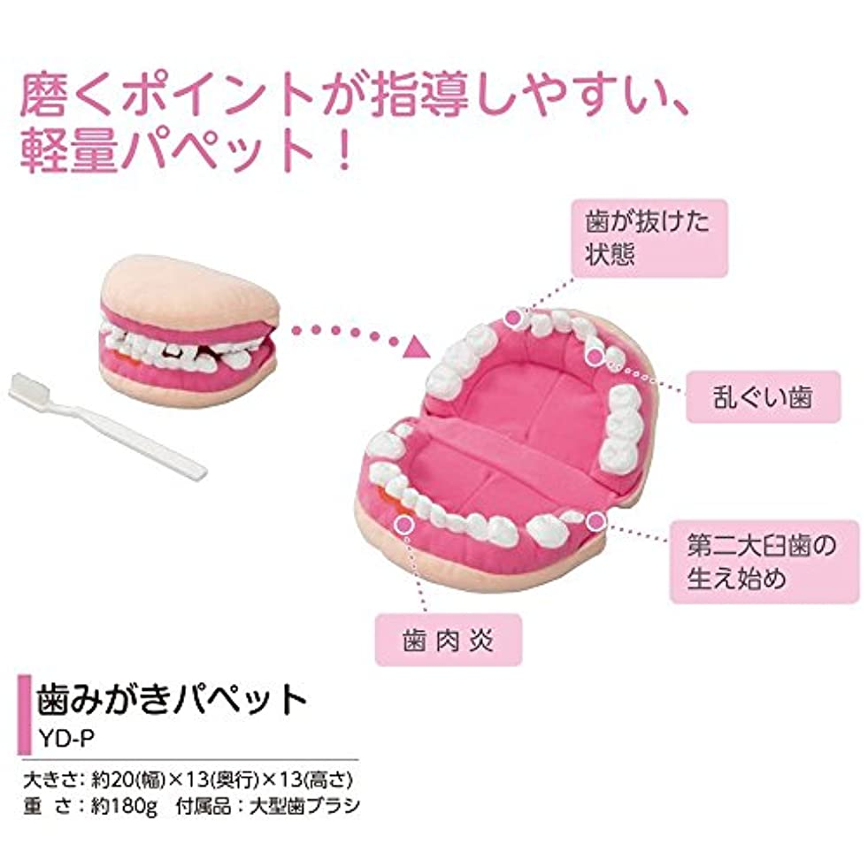 学習心理的脚歯磨き指導用パペット YD-P 人形 ぬいぐるみ 歯みがきパペット