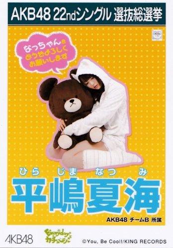 AKB48 公式生写真 22ndシングル選抜総選挙「Ever...