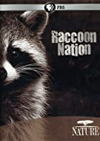 Nature: Raccoon Nation [DVD] [Import]