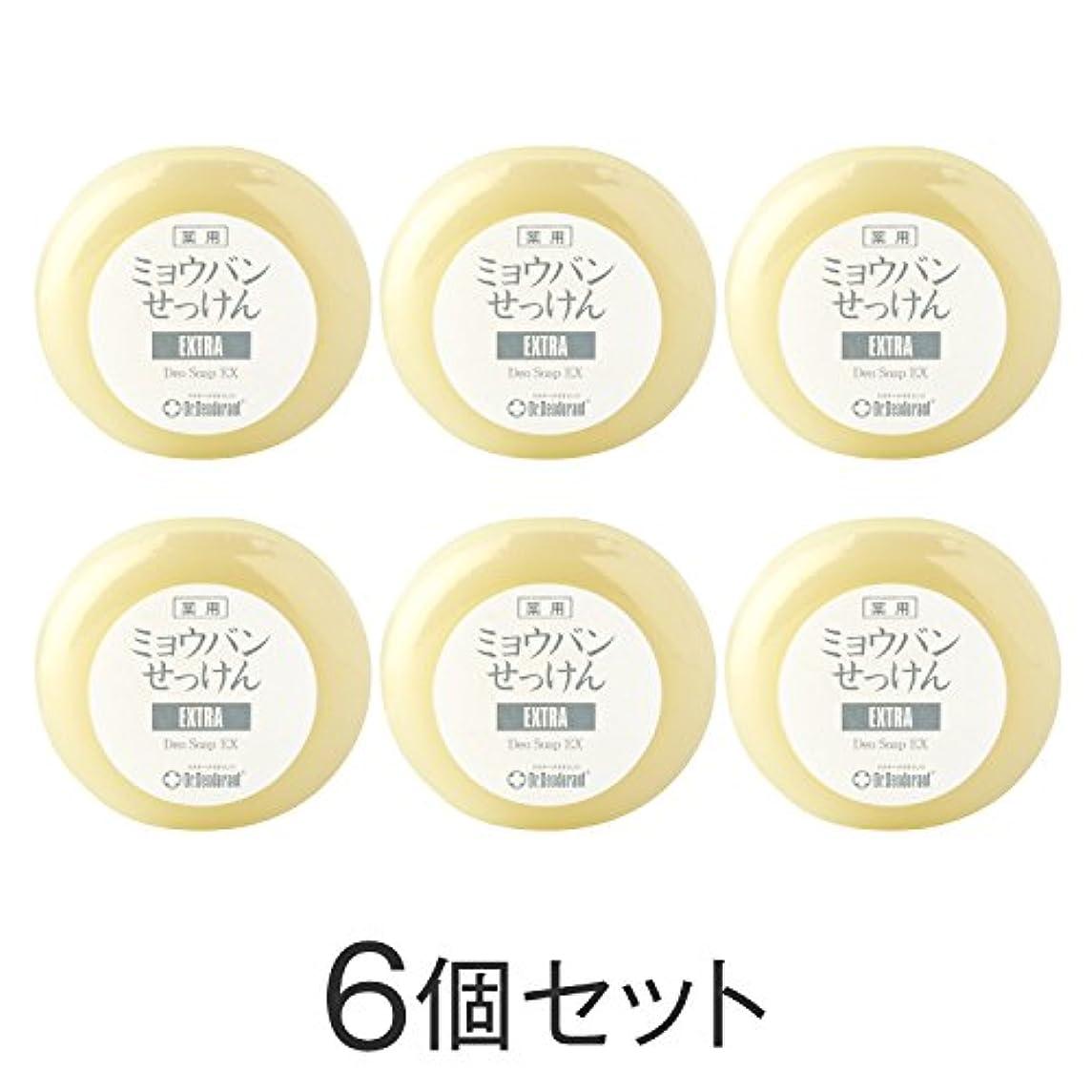 メモ日食ドクターデオドラント 薬用ミョウバンせっけんEX(6個セット)