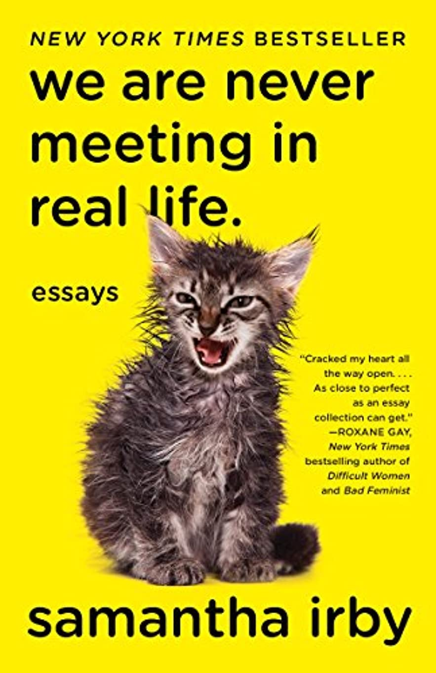 We Are Never Meeting in Real Life.: Essays (English Edition)