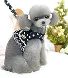 Novcom(ノブコム)ハーネス リード付 犬 猫 ドッド柄 ピンク ブラック 胴輪 お散歩 お出かけ 自宅 旅行 S M L XL(ブラックLサイズ )