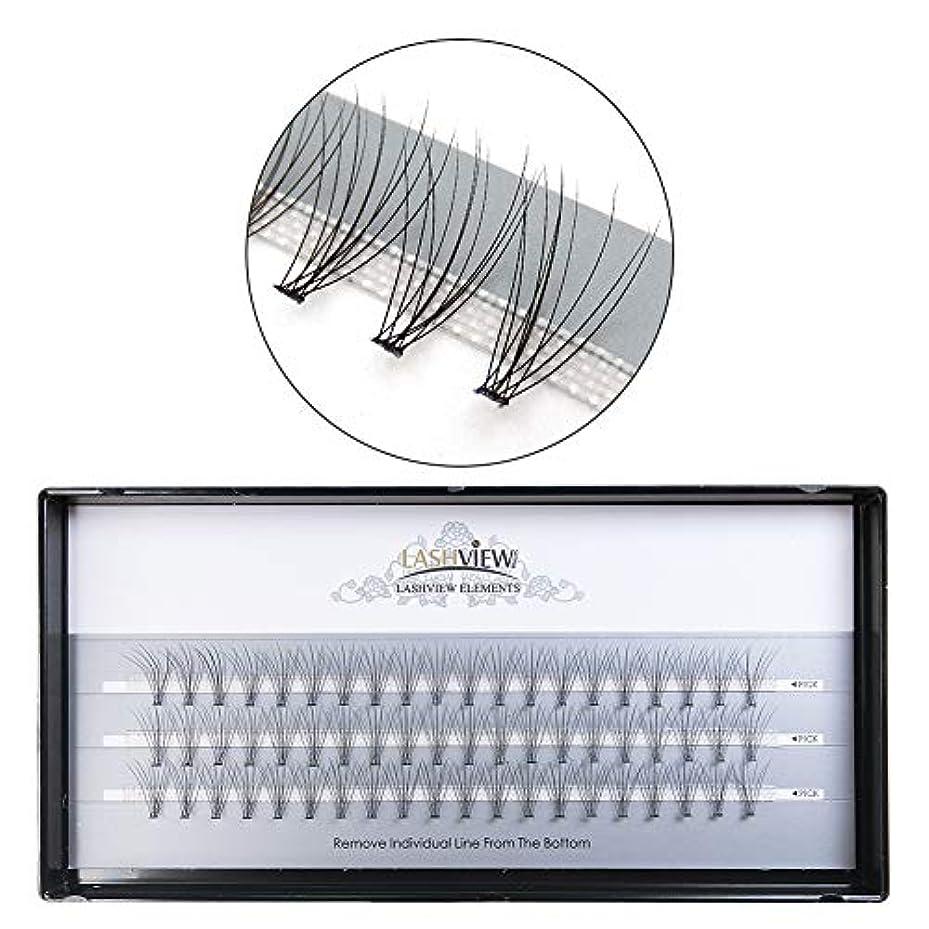 同様の説明的ブリーフケースLASHVIEW 高品質まつげエクステ太さ0.05mm フレア セルフ 素材 10本束10mm Cカールマツエク