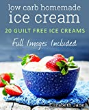 Low Carb Homemade Ice Cream: 20 Diabetic, Paleo, Gluten Free, Guilt-Free Recipes (Elizabeth Jane Cookbook) (English Edition)