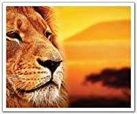 JP London POS2407 uStrip Peel and Stick Removable Wall Decal Sticker Mural Lion King Mufasa Simba Africa 24-Inch by 19.75-Inch [並行輸入品]
