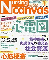 Nursing Canvas(ナーシングキャンバス) 2019年 01 月号 [雑誌]