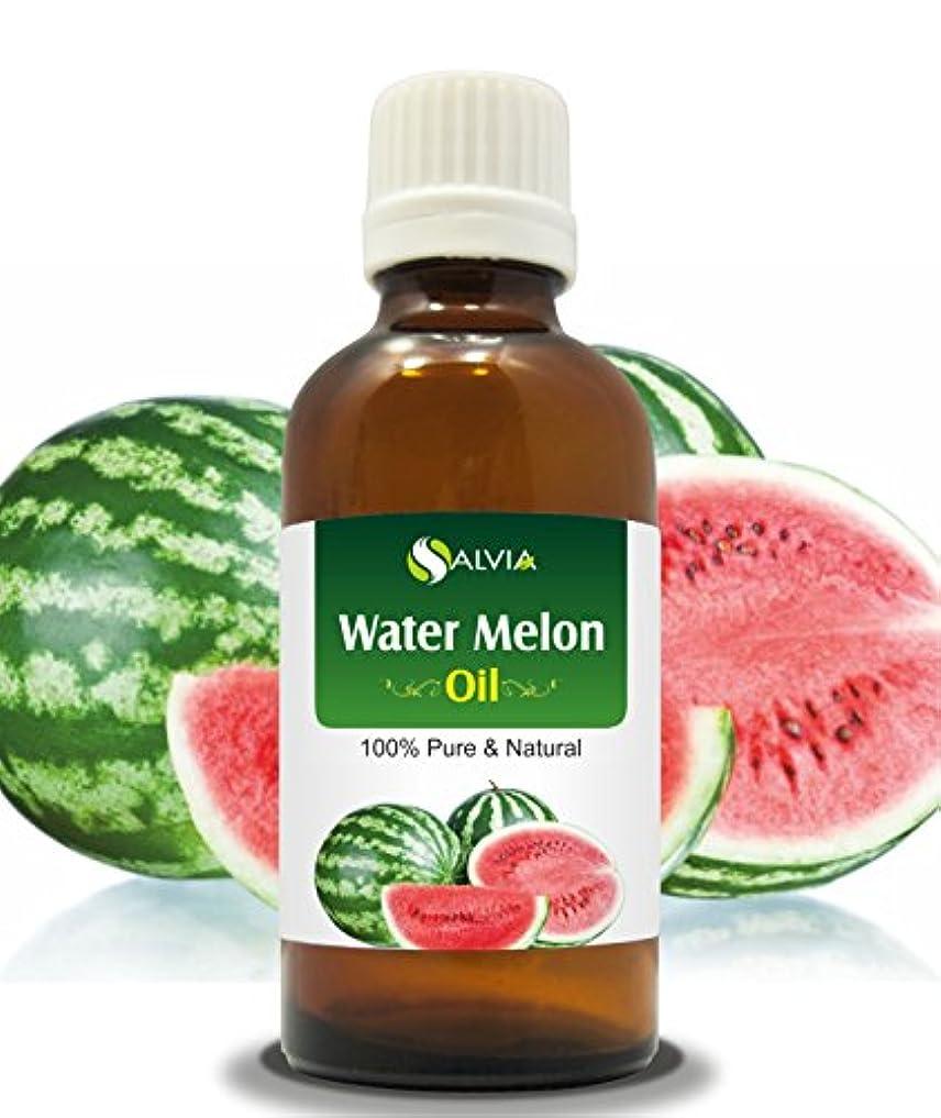 付録他の場所ミリメートルWater Melon Oil (CITRULLUS VULGARIS) 100% Natural Pure Carrier Oil 30ML