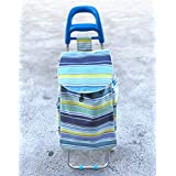 2 Wheels Shopping Trolley Bag Foldable Market Luggage Collapsible CL2160 (Blue)
