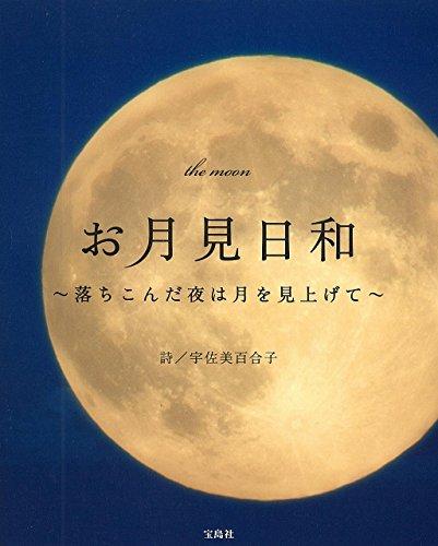 お月見日和 ~落ちこんだ夜は月を見上げて~